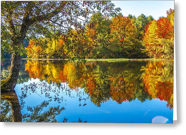 October Reflection Greeting Card by Laurie Breton