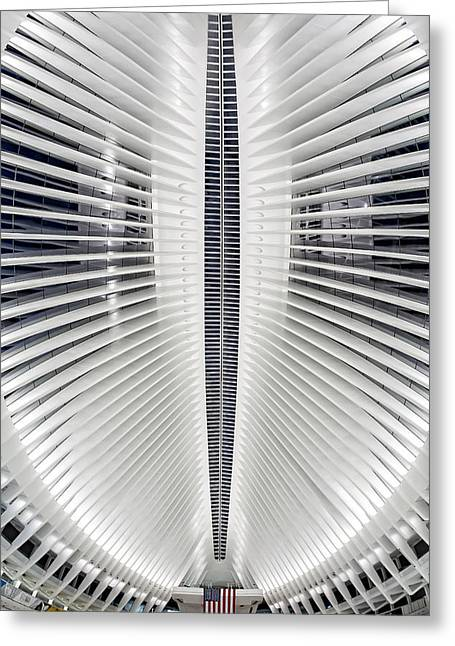 Oculus World Trade Center Wtc Skylight Greeting Card by Susan Candelario