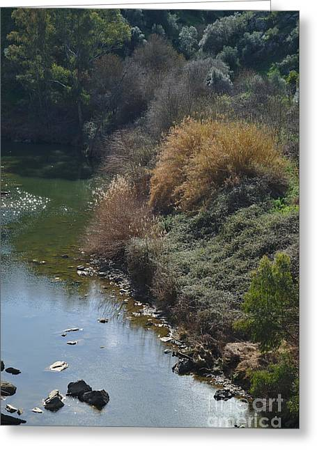 Outdoor Greeting Cards - Oeiras Creek and vegetation in Alentejo Greeting Card by Angelo DeVal