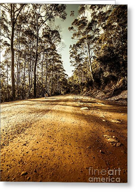 Off The Beaten Track Greeting Card by Jorgo Photography - Wall Art Gallery