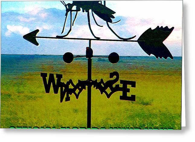 Official Florida Wind Vane Greeting Card by David Lee Thompson