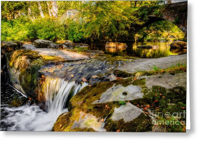 Ogwen Bank Waterfall  Greeting Card by Adrian Evans