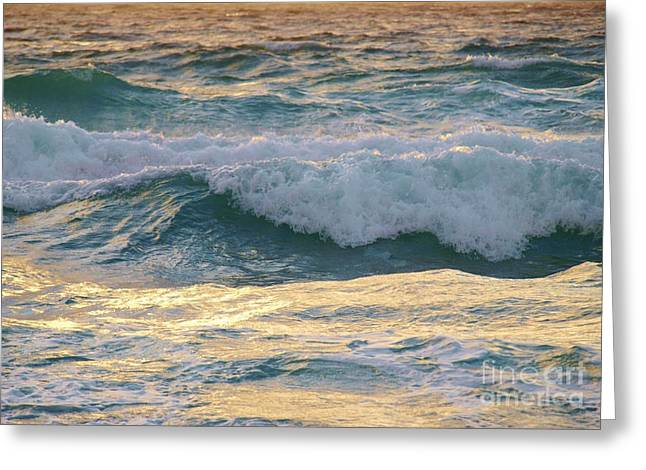 Warm Summer Pyrography Greeting Cards - Oh  Majestic Ocean Greeting Card by E Luiza Picciano