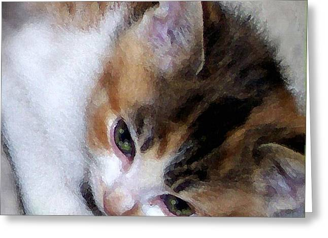 Cat Prints Pastels Greeting Cards - Oh So Sleepy Greeting Card by Mark Vent