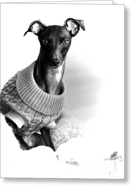 Oh Those Eyes Black And White Greeting Card by Angela Rath