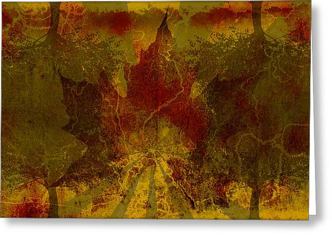 Ok Fall Greeting Card by Shawn Ross