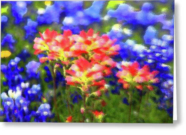 Paint Photograph Greeting Cards - Oklahoma wildflowers Greeting Card by Toni Hopper