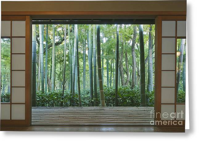 Honshu Greeting Cards - Okochi Sanso Villa Bamboo Garden Greeting Card by Rob Tilley