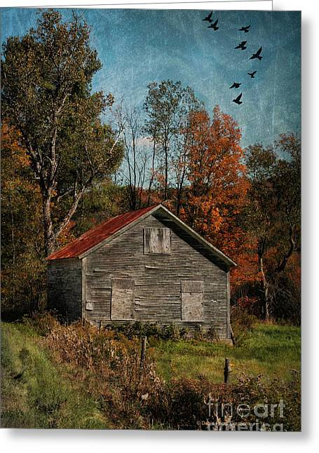 Old And Abandoned In Vermont Greeting Card by Deborah Benoit