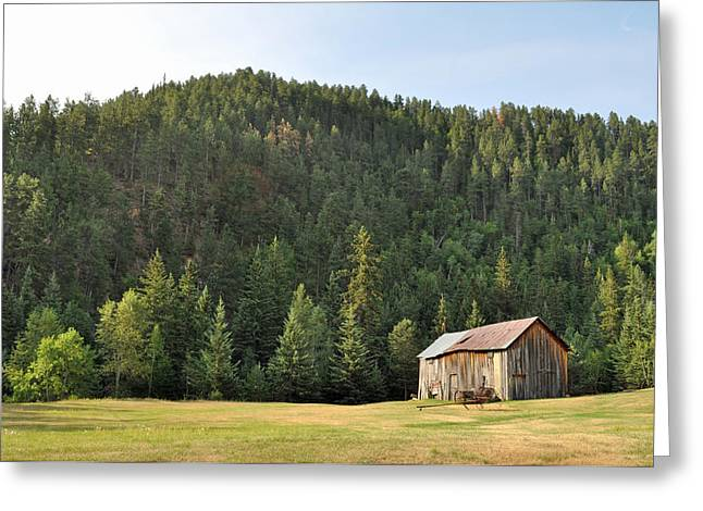 Recently Sold -  - Red Roofed Barn Greeting Cards - Old Barn Greeting Card by David Mahncke