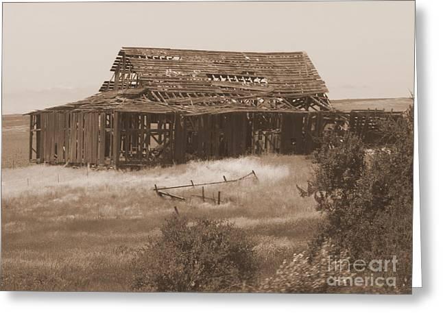 Old Crumbling Barn Greeting Cards - Old Barn in Oregon Greeting Card by Carol Groenen