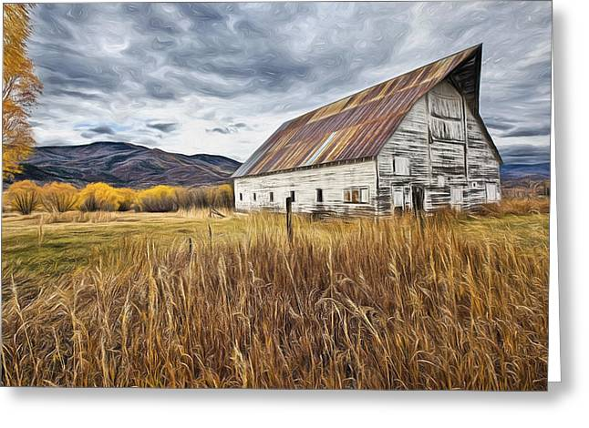Old Barn In Steamboat,co Greeting Card by James Steele