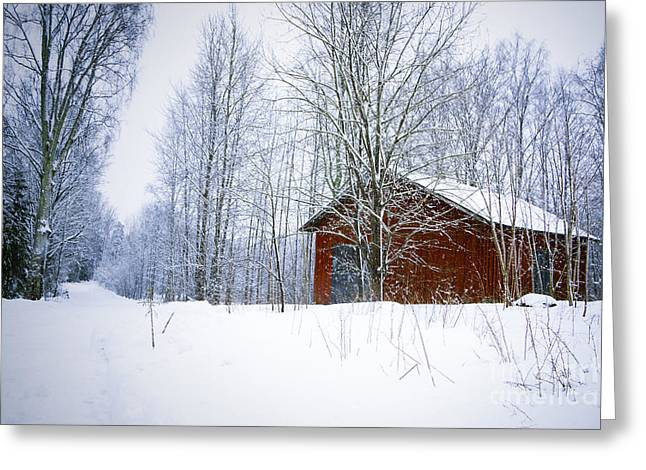 Ghostly Barn Greeting Cards - Old Barn in Wintry Forest Greeting Card by A Cappellari