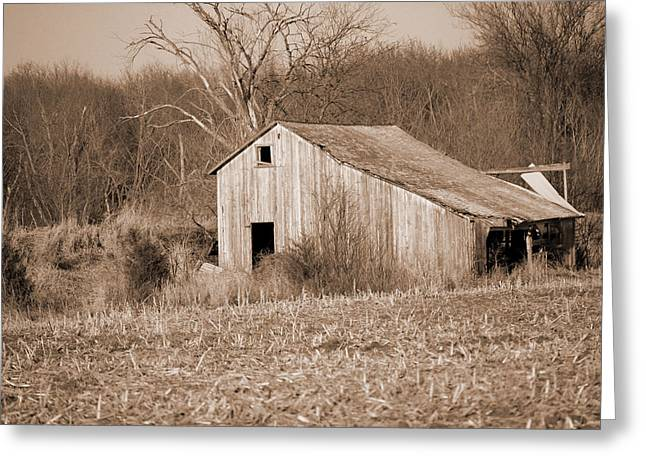 Tin Roof Greeting Cards - Old Barn Greeting Card by Jame Hayes