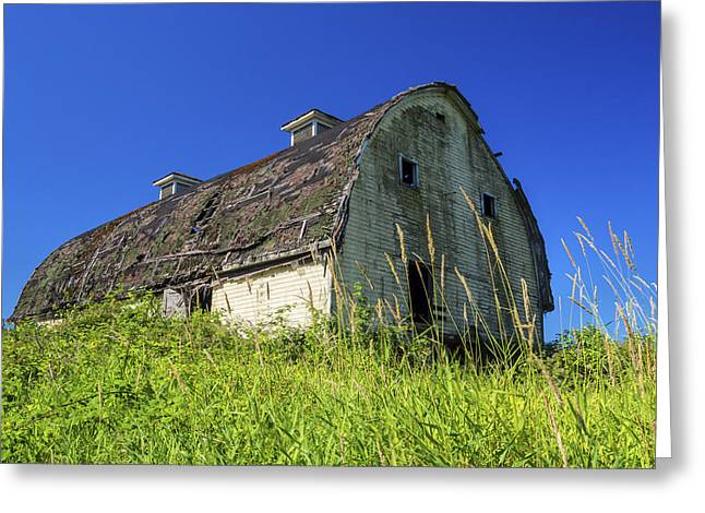 Overgrown Greeting Cards - Old Barn Greeting Card by Kyle Wasielewski