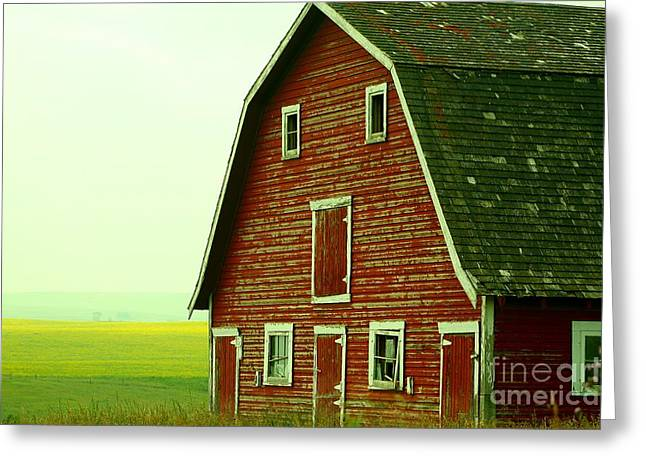 Old Barn Greeting Card by Mario Brenes Simon