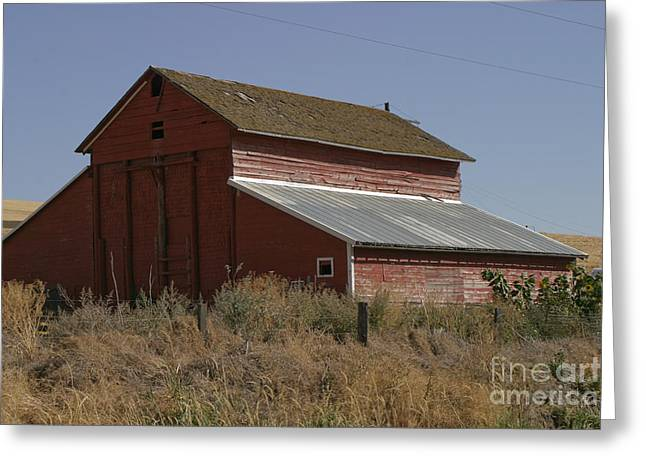 Red Roofed Barn Greeting Cards - Old Barn Greeting Card by Robert  Torkomian