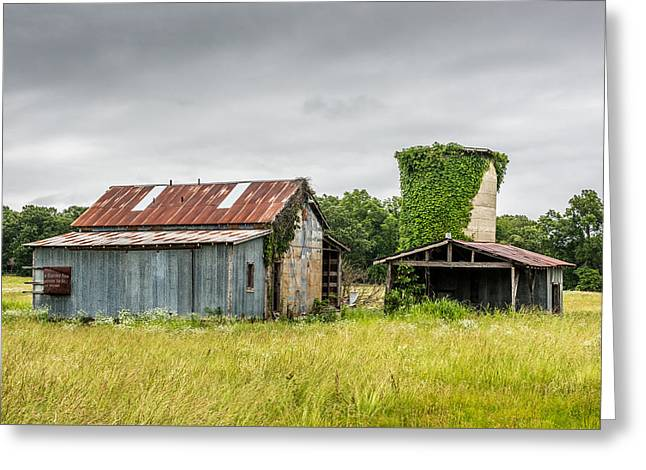Barn Yard Greeting Cards - Old barn with vine covered silo Greeting Card by Paul Freidlund