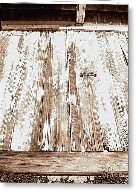 Basement Art Greeting Cards - Old Basement Doors Greeting Card by Colleen Kammerer