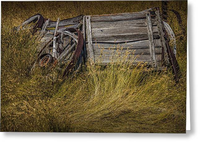 Randy Greeting Cards - Old Broken Down Wooden Farm Wagon Greeting Card by Randall Nyhof
