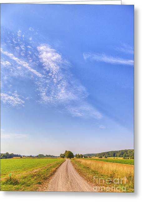 Old Country Road Greeting Card by Veikko Suikkanen