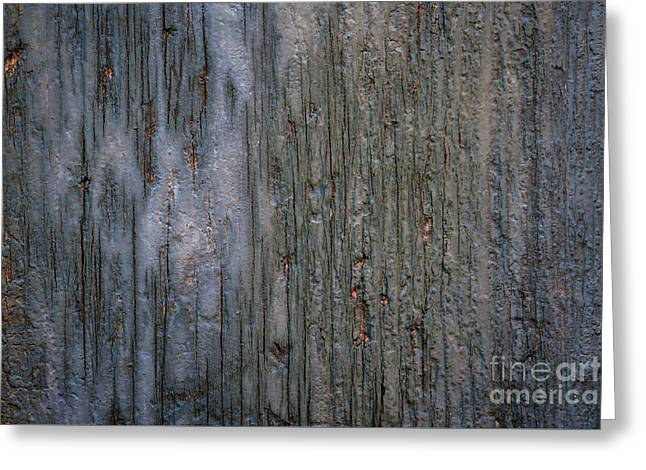 Old Cracked Wood Background Greeting Card by Elena Elisseeva