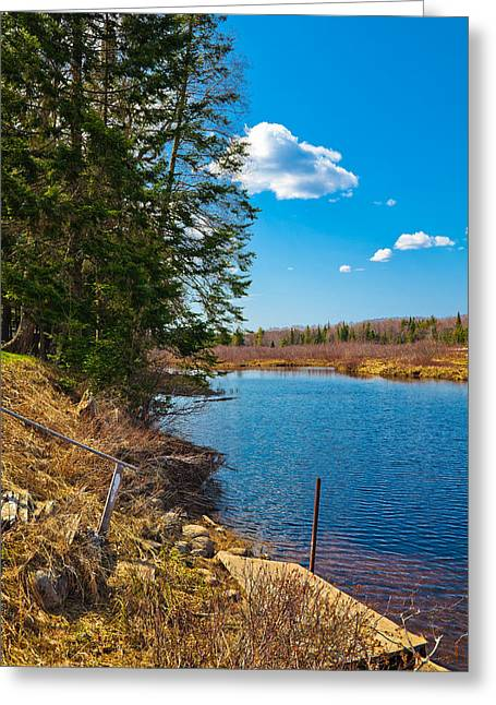 Old Forge Greeting Cards - Old Dock on the Moose River Greeting Card by David Patterson