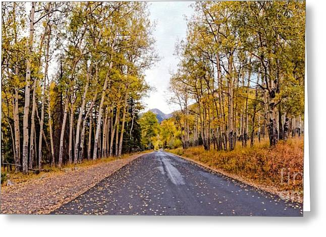 The Mummy Greeting Cards - Old Fall River Road with Changing Aspens - Rocky Mountain National Park - Estes Park Colorado Greeting Card by Silvio Ligutti