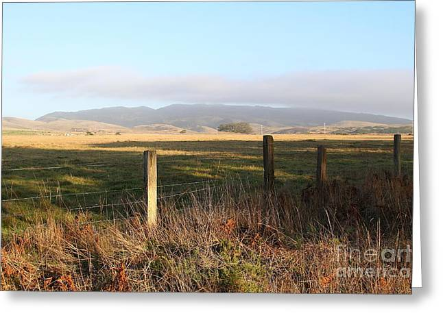 Old Fence And Landscape Along Sir Francis Drake Boulevard At Point Reyes California . 7d9965 Greeting Card by Wingsdomain Art and Photography