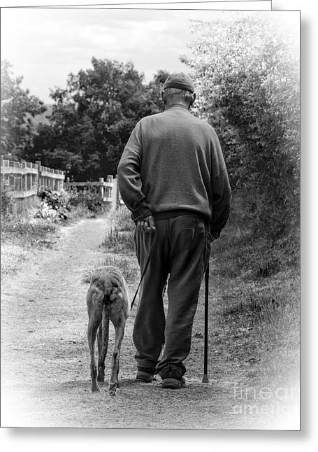 Dog Walking Greeting Cards - Old Friends Greeting Card by Linsey Williams