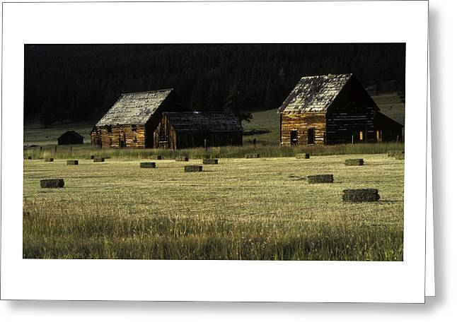 Old Relics Photographs Greeting Cards - Old Homestead-Potomac Montana Greeting Card by Thomas Schoeller
