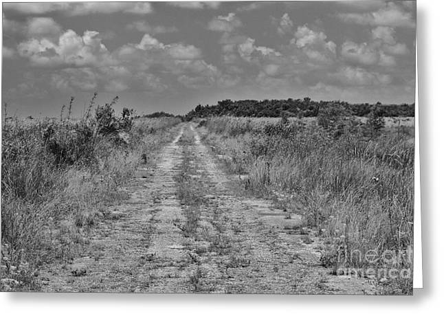 Print Photographs Greeting Cards - Old Ingraham Highway Greeting Card by Chuck  Hicks