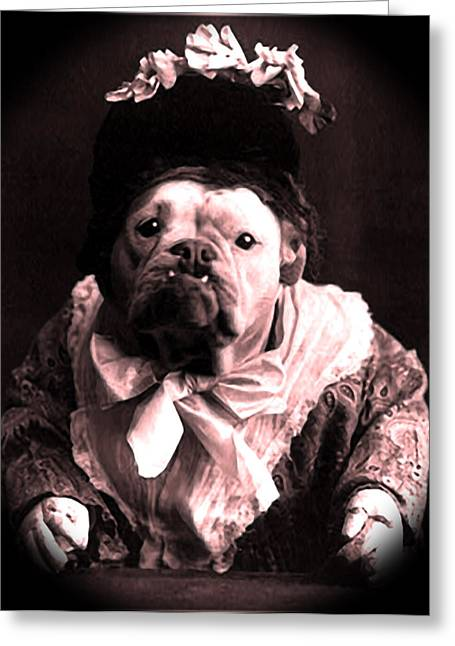 Pets Greeting Cards - Old Lady English Bulldog Greeting Card by Tisha McGee