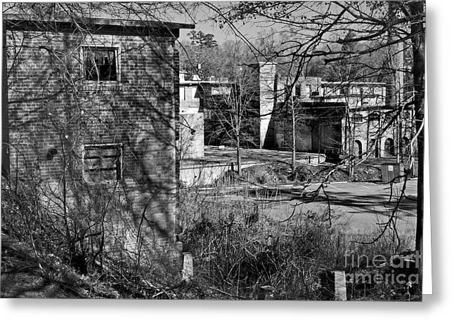 River View Greeting Cards - Old Lexington Mill Sc Greeting Card by Skip Willits