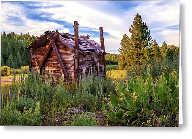 Old Cabins Greeting Cards - Old Lumber Mill Cabin Greeting Card by James Eddy