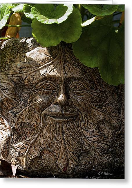 Christopher Holmes Greeting Cards - Old Man In The Garden Greeting Card by Christopher Holmes