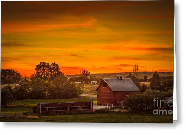 Old Red Barn Greeting Card by Robert Bales