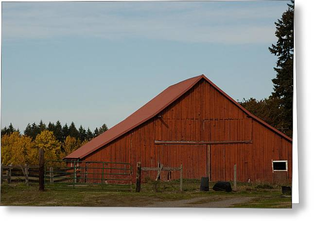 Tin Roof Greeting Cards - Old Red Barn Greeting Card by Robert  Torkomian