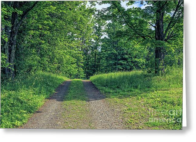 Old Road Through The Woods Greeting Card by Edward Fielding