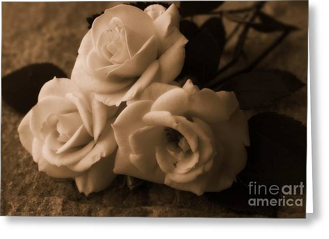 Interior Still Life Greeting Cards - Old Roses Greeting Card by Clare Bevan