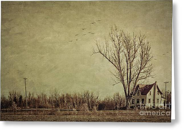 Smudge Greeting Cards - Old rural farmhouse with grunge feeling Greeting Card by Sandra Cunningham