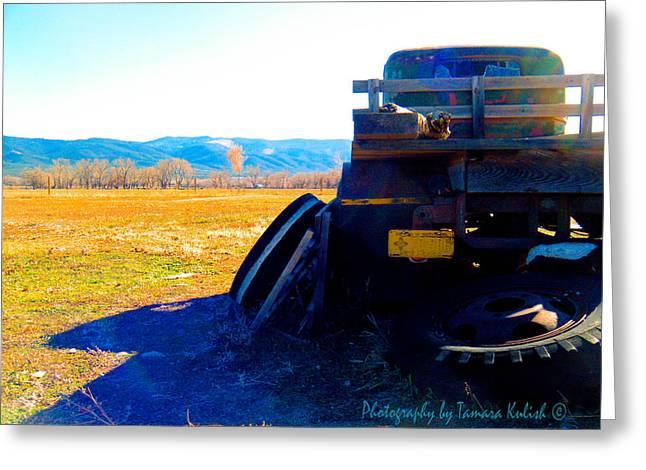 Rusted Cars Greeting Cards - Old Rusted Truck Near Taos 5 Greeting Card by Tamara Kulish