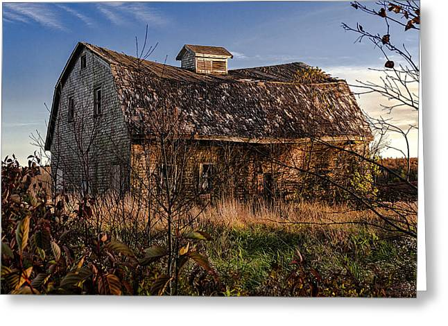 Old Maine Barns Greeting Cards - Old Rustic Barn Greeting Card by Marty Saccone