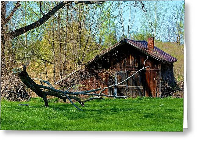 Tin Roof Greeting Cards - Old Shack Greeting Card by Richard Jenkins