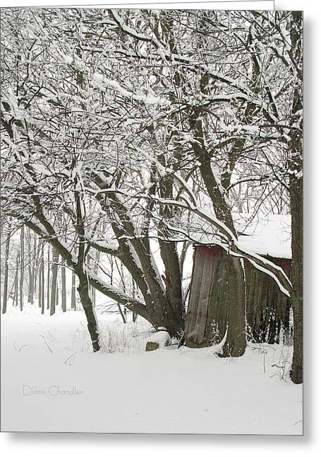 Sheds Greeting Cards - Old Shed in Snowfall Greeting Card by Diane Chandler