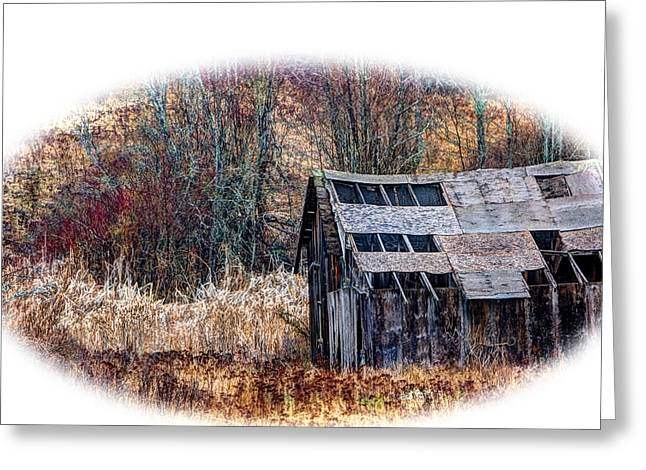 Shed Mixed Media Greeting Cards - Old Shed Greeting Card by Loni Collins