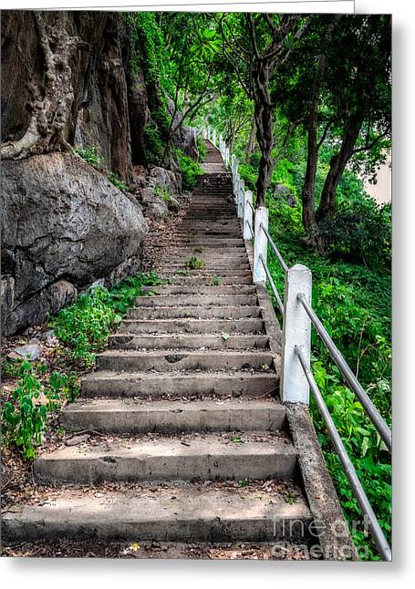 Old Steps Greeting Card by Adrian Evans