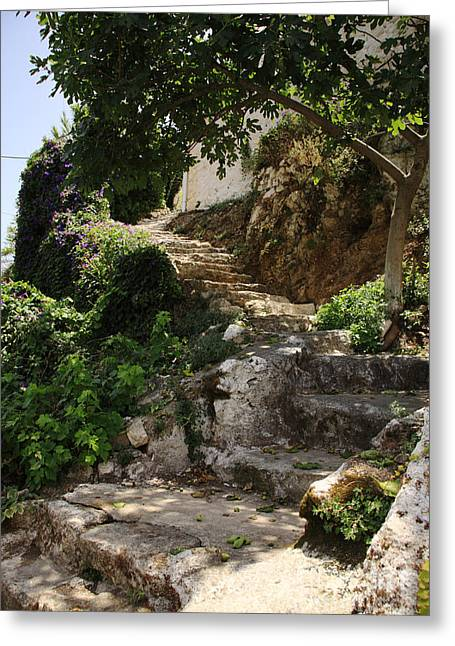 Stepping Stones Greeting Cards - Old steps up the hillside Greeting Card by Deborah Benbrook