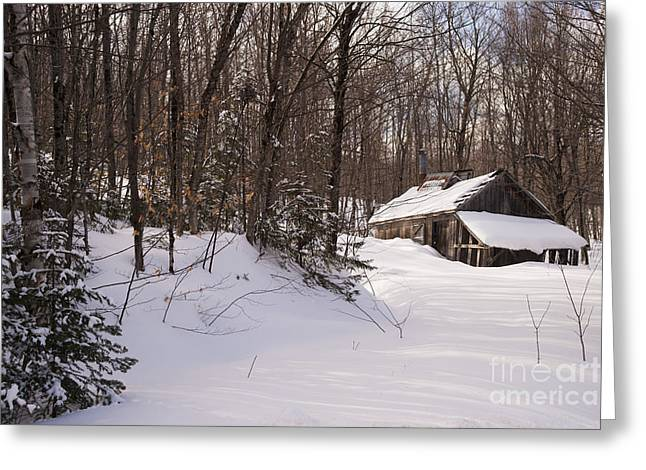 Old Sugar Shack Greeting Card by Philippe Boite