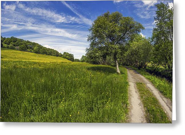 Old Country Roads Greeting Cards - Old Summer Country Road Greeting Card by Ian Mitchell